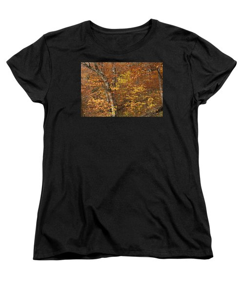 Autumn In The Woods Women's T-Shirt (Standard Cut) by Andrew Soundarajan