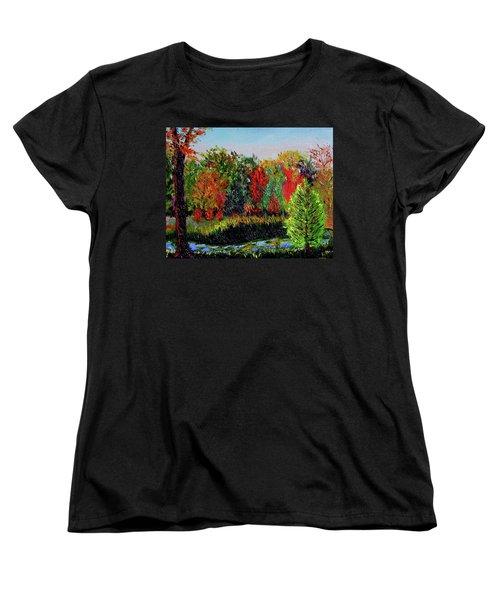 Sewp 10 10 Women's T-Shirt (Standard Cut) by Stan Hamilton