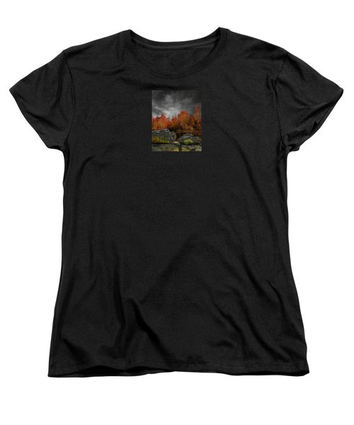 4004 Women's T-Shirt (Standard Cut) by Peter Holme III
