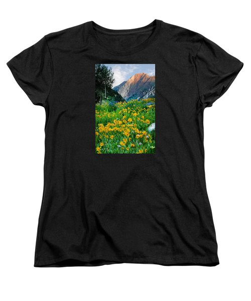 Wasatch Mountains Women's T-Shirt (Standard Cut) by Utah Images