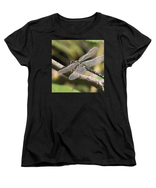 Aeshna Juncea - Common Hawker Taken At Women's T-Shirt (Standard Cut) by John Edwards