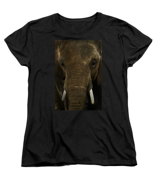 Women's T-Shirt (Standard Cut) featuring the photograph African Elephant by Michael Cummings