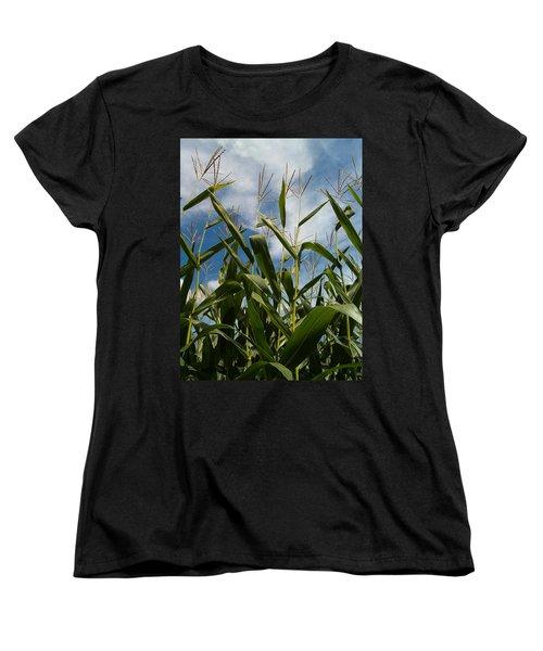 All About Corn Women's T-Shirt (Standard Cut) by Sara  Raber