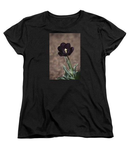 All Darkness And Light Women's T-Shirt (Standard Cut) by Morris  McClung