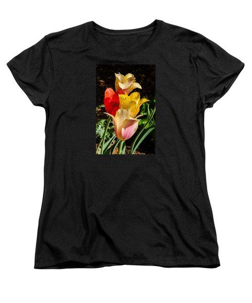 All In A Pretty Row Women's T-Shirt (Standard Cut) by Jim Moore