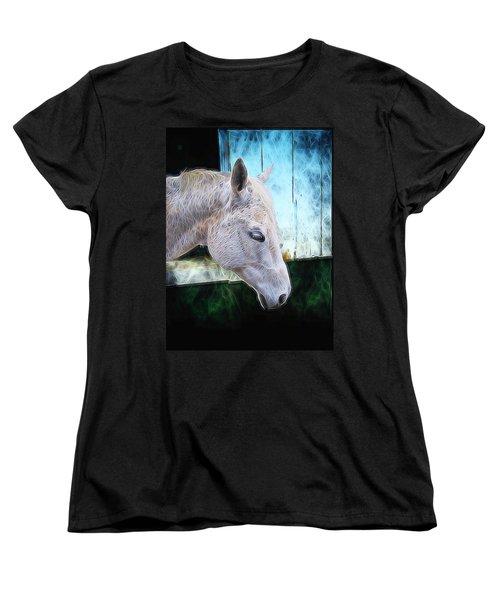 Women's T-Shirt (Standard Cut) featuring the photograph Alone  by Aaron Berg