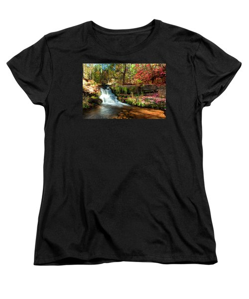 Along The Horton Trail Women's T-Shirt (Standard Cut) by Anthony Citro