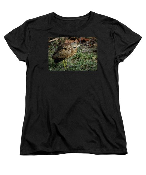American Bittern Women's T-Shirt (Standard Cut) by Douglas Stucky