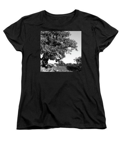 Ancient Oak, Bradgate Park Women's T-Shirt (Standard Cut) by John Edwards