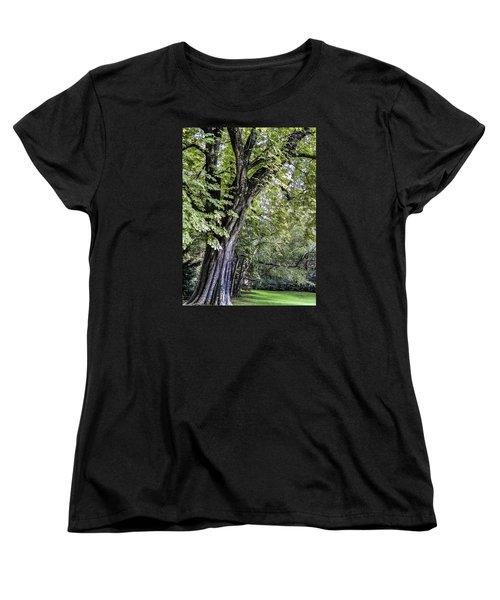 Ancient Tree Luxembourg Gardens Paris Women's T-Shirt (Standard Cut) by Sally Ross