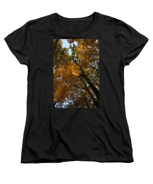 Autumn Canopy Women's T-Shirt (Standard Cut) by Shari Jardina