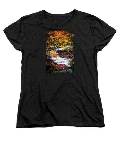 Autumn Cascade  Women's T-Shirt (Standard Cut) by Parker Cunningham