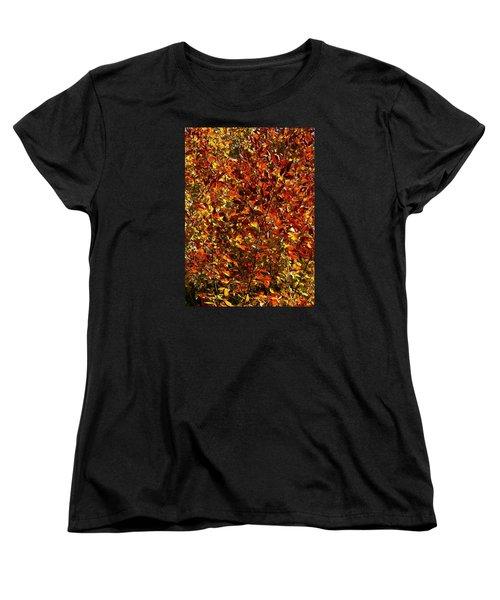 Women's T-Shirt (Standard Cut) featuring the photograph Autumn Colors by Karen Harrison