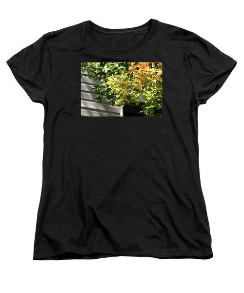 Autumn Leaves Against White Women's T-Shirt (Standard Cut) by Michele Wilson