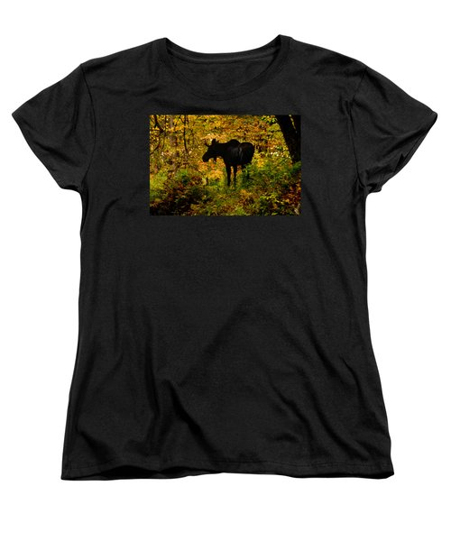 Autumn Moose Women's T-Shirt (Standard Cut) by Brent L Ander
