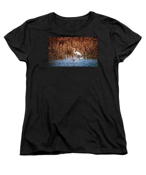 Autumn's Shore Women's T-Shirt (Standard Cut) by Ray Congrove
