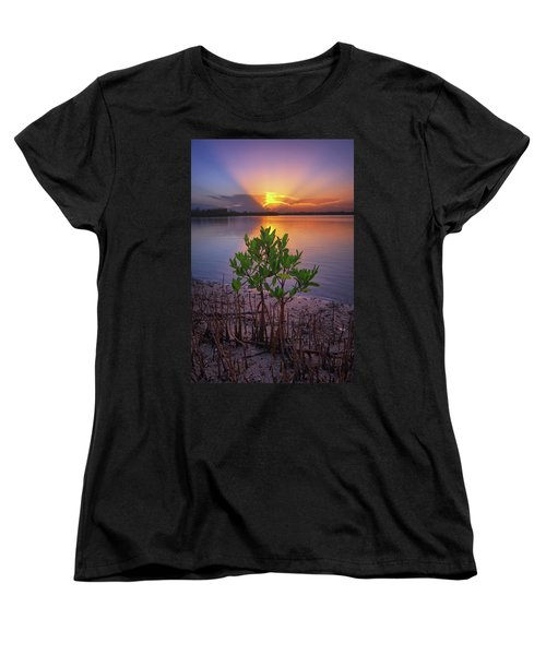 Baby Mangrove Sunset At Indian River State Park Women's T-Shirt (Standard Cut) by Justin Kelefas