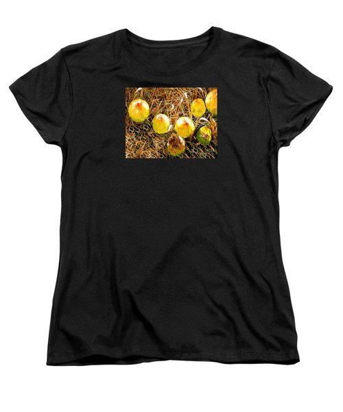 Barrel Cactus Fruit Women's T-Shirt (Standard Cut) by Merton Allen