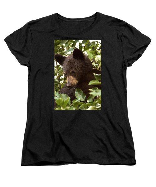 Bear Cub In Apple Tree2 Women's T-Shirt (Standard Cut)