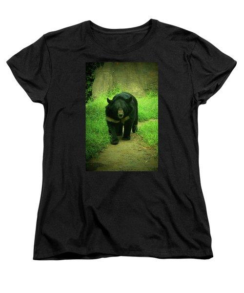 Bear On The Prowl Women's T-Shirt (Standard Cut) by Trish Tritz