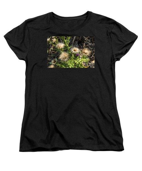 Beauty In Aging Women's T-Shirt (Standard Cut) by Sue Smith