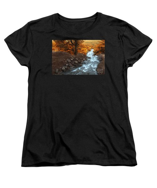 Beauty Of The Nature Women's T-Shirt (Standard Cut) by Charuhas Images