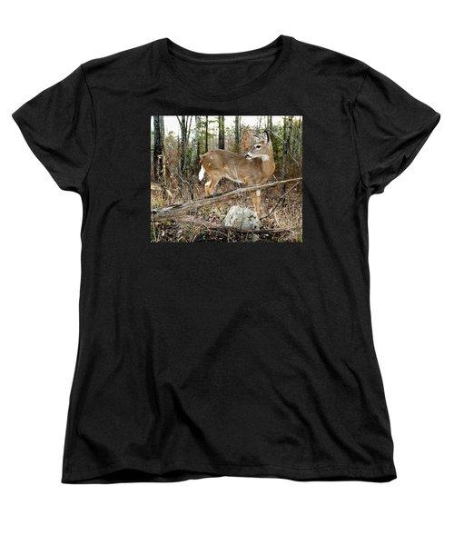 Beloved Tzav Women's T-Shirt (Standard Cut) by Bill Stephens