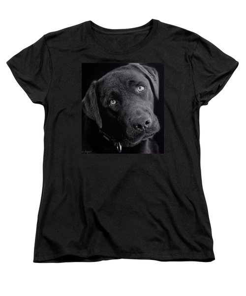 Women's T-Shirt (Standard Cut) featuring the photograph Benji In Black And White by Wallaroo Images