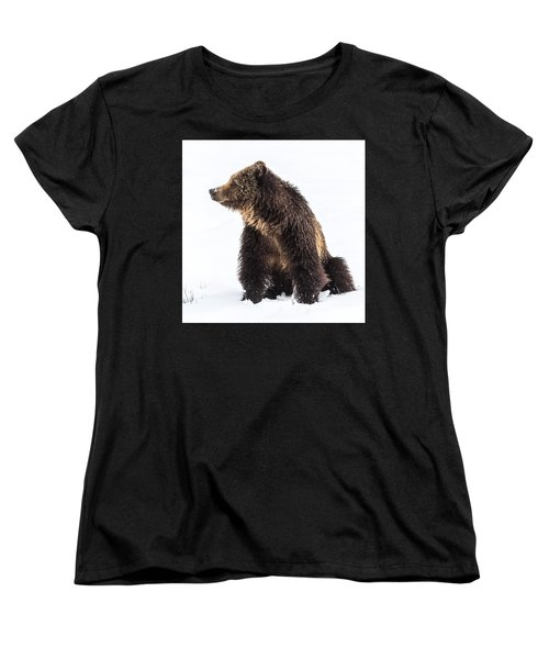 Women's T-Shirt (Standard Cut) featuring the photograph Beryl Springs Grizzly Sow In Snow by Yeates Photography