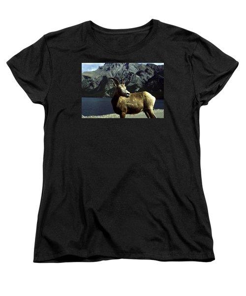 Bighorn Sheep Women's T-Shirt (Standard Cut) by Sally Weigand