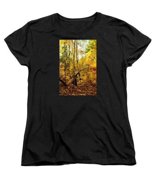 Birch Autumn Women's T-Shirt (Standard Cut) by Henryk Gorecki