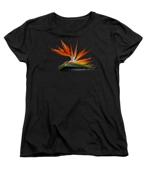 Bird In Paradise Women's T-Shirt (Standard Cut) by Debra and Dave Vanderlaan