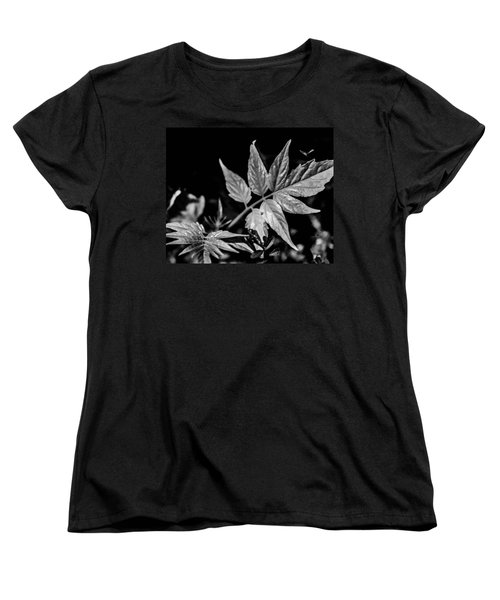 Black And White On The Forest Floor Women's T-Shirt (Standard Cut) by Bruce Pritchett