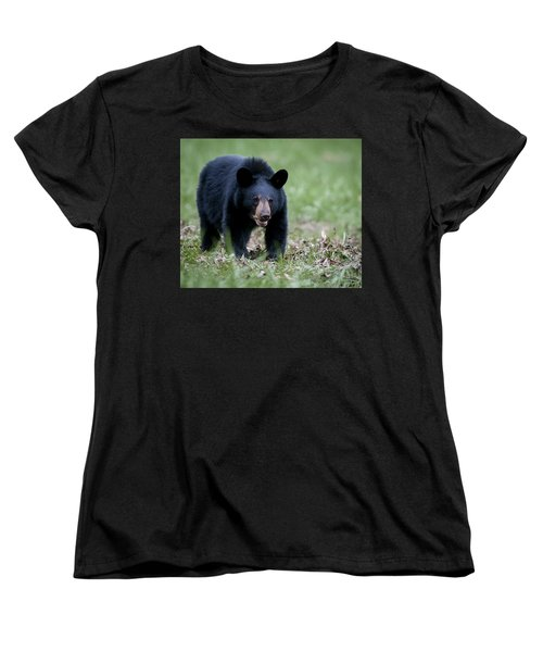 Black Bear Women's T-Shirt (Standard Cut) by Tyson and Kathy Smith