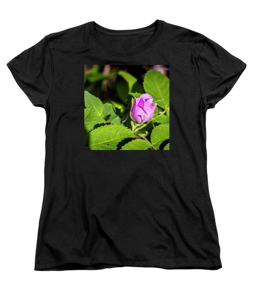 Women's T-Shirt (Standard Cut) featuring the photograph Black Bee On Approach by Darcy Michaelchuk