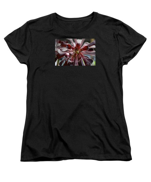 Black Rose Women's T-Shirt (Standard Cut) by Deborah  Crew-Johnson