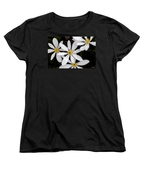Sanguinaria Women's T-Shirt (Standard Cut) by Skip Tribby