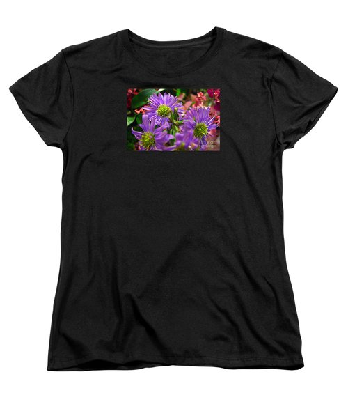 Blooming Asters Women's T-Shirt (Standard Cut) by Merton Allen