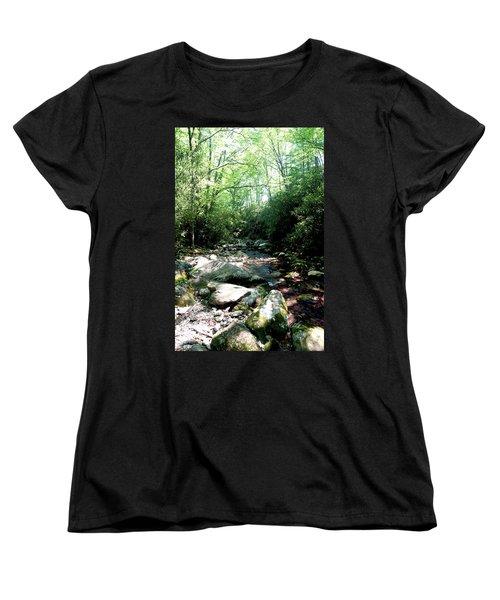 Women's T-Shirt (Standard Cut) featuring the photograph Blue Ridge Parkway Stream by Meta Gatschenberger