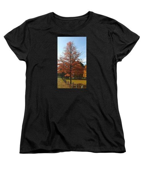 Blue Sky Women's T-Shirt (Standard Cut) by Jana E Provenzano