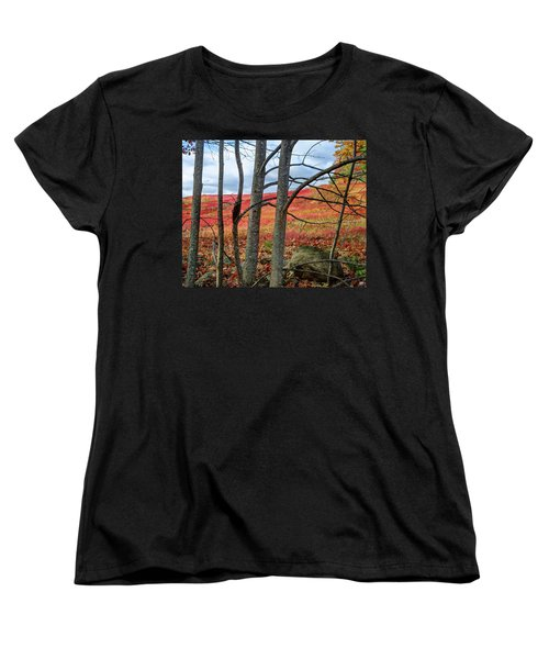 Blueberry Field Through The Wall - Cropped Women's T-Shirt (Standard Cut)