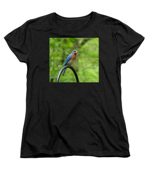 Bluebird Catches Worm Women's T-Shirt (Standard Cut)