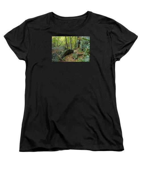 Boulders On The Bear Hair Gap Trail Women's T-Shirt (Standard Cut)