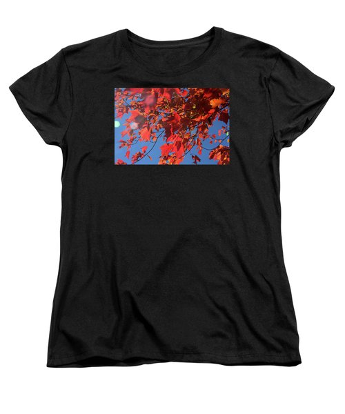 Branches Of Red Maple Leaves On Clear Sky Background Women's T-Shirt (Standard Cut) by Emanuel Tanjala