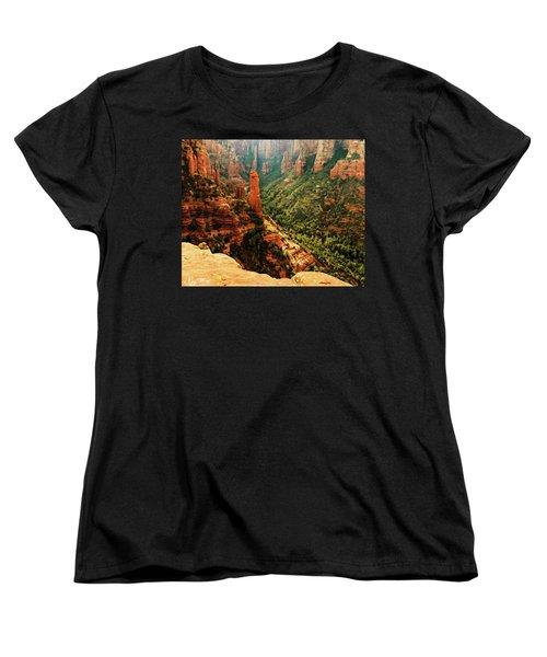 Brins Mesa 07-143 Women's T-Shirt (Standard Cut) by Scott McAllister
