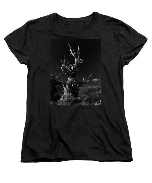 Bristlecone Pine Women's T-Shirt (Standard Cut) by Art Shimamura