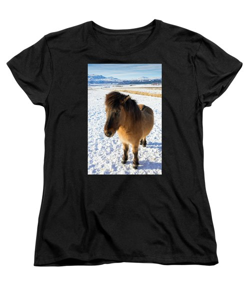 Women's T-Shirt (Standard Cut) featuring the photograph Brown Icelandic Horse In Winter In Iceland by Matthias Hauser