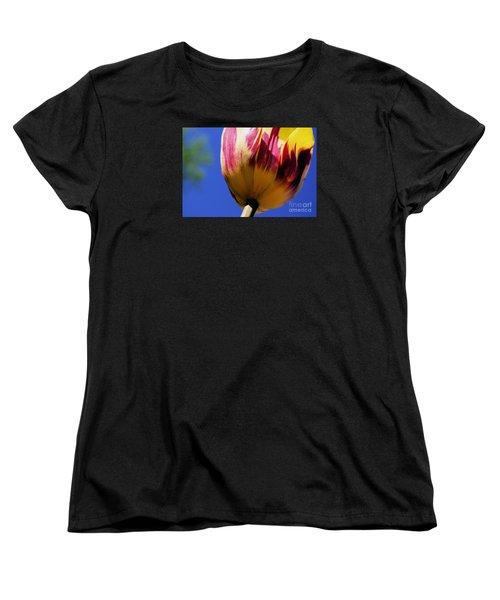 Bugs  Pov  Women's T-Shirt (Standard Cut) by John S