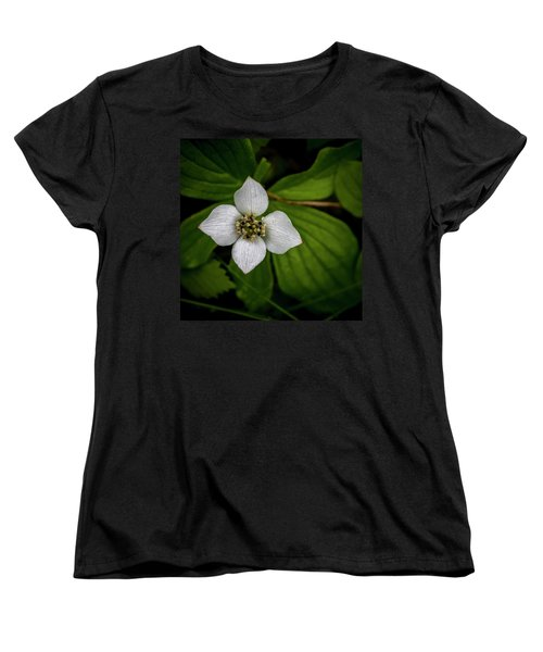 Women's T-Shirt (Standard Cut) featuring the photograph Bunchberry Dogwood On Gloomy Day by Darcy Michaelchuk