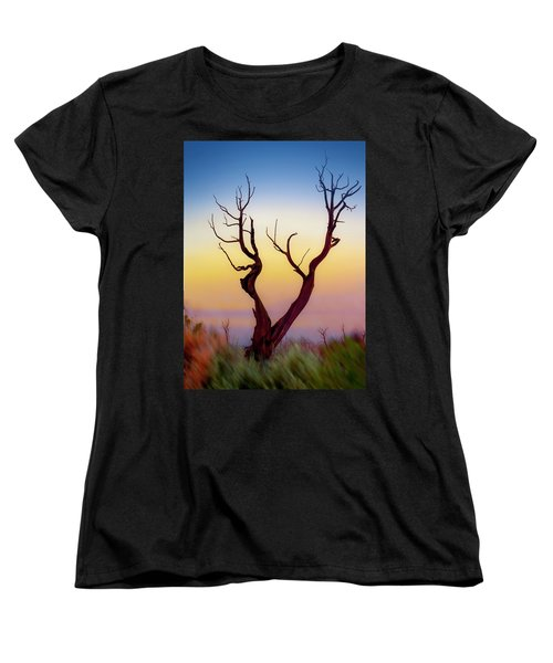 Burnt Cedar At Sunset Women's T-Shirt (Standard Cut) by Gary Warnimont